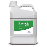 LACTACID 5LT - Cod.: 95438