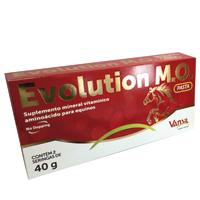 EVOLUTION SUPLEMENTO P/ EQUINOS 40G VANSIL - Cod.: 113560